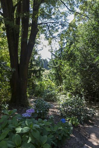 cloudehill gardens-7