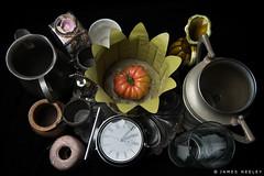 Things That Are Round (James Neeley) Tags: stilllife santafeworkshops jamesneeley