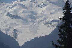 IMGP9256 (Alvier) Tags: schweiz ostschweiz rheintal werdenberg alviergebiet chrummenstein berg lawine
