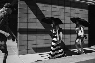 Anza Borrego | Borrego Springs, CA | 2017