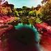 color diffusions