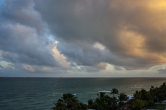 Degradado Caribeo. (LaMaru89) Tags: ocean sunset sky color tree beach clouds roc day miami colores palm cielo eden degradado tonalidades