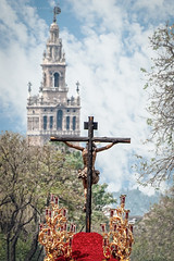 La sed hacia la catedral (Javier Martinez de la Ossa) Tags: españa sevilla andalucía giralda semanasanta holyweek crucificado miercolessanto lased cristodelased javiermartinezdelaossa