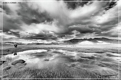 """Silver reflections <a style=""""margin-left:10px; font-size:0.8em;"""" href=""""http://www.flickr.com/photos/66444177@N04/21092687889/"""" target=""""_blank"""">@flickr</a>"""