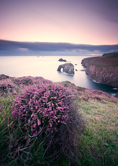 DSC_0690 (SAR1N) Tags: uk longexposure sunset sea clouds nikon cornwall purple heather sigma cliffs landsend done 1020mm d90