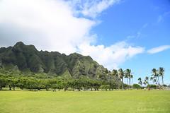 09172015_014_ (ALOHA de HAWAII) Tags: hawaii oahu kualoaregionalpark kualoarange