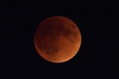 DSC_4345 (Klaang) Tags: moon eclipse bloodmoon