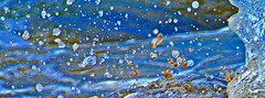 water splash (robertskirk1) Tags: ocean park beach nature water canon hawaii pacific outdoor maui hi splash fantasticnature koopika