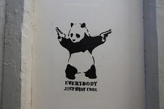 DSC06381 (weekend_vagabond) Tags: street art graffiti scotland stencil panda spray scotlan galashiels scottishborders