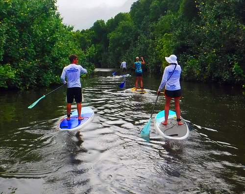 2015 Kauai Paddle Adventure  (92)