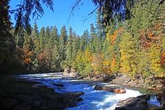 Campbell River, Elk Falls Provincial Park, Vancouver Island, Canada (Photo Bug TA) Tags: travel canada britishcolumbia vancouverisland campbellriver infocus highquality elkfallsprovincialpark