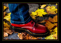 red doc (madmtbmax) Tags: blue autumn red color art leaves yellow contrast boot shoe maple colours boots artistic kunst photoshopped jeans digitalpainting mapleleaf strong colourful doc farbe farbig bunt docmartens pastell ahorn