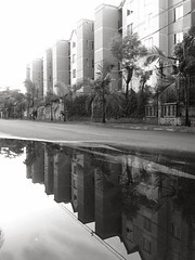 this is not the reality what you're looking for. (HSOBERON) Tags: water agua upsidedown streetphotography reflexions iphone reflejosenelagua envigado cellphonephotography alterreality waterreflexions iphone4 hsoberon endorinc norebos hernánsoberon realidadalterna
