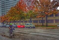 Geometry on a rainy day (alnbbates) Tags: november oklahoma lines rain bicyclist 2015 downtowntulsa november2015