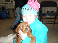 sonny-meeting-his-new-big-sister-on-puppy-pick-day--sonny-is-one-of-molly-and-chewys-puppies-_4477997584_o