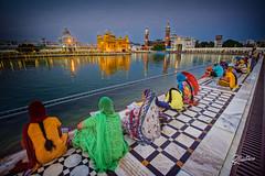 Sikh Prayer (Riccardo Maria Mantero) Tags: mantero riccardo riccardomantero riccardomariamantero cult india outdoors people praying religion travel