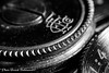 Macro photo Foth Luxus 2 (Franck Baltenweck Photographie) Tags: macro photo kenko bague allonge nikkor 50mm 18