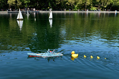 Summer Flotilla (Eddie C3) Tags: newyorkcity nycparks centralpark conservatorywater rubberduckies summertime reflections water sailboats whimsical battleship fun funviews