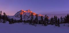 Mt Shuksan at Sunset (Heather Meadows, Mt Baker NF, WA) (Sveta Imnadze) Tags: nature landscape mtshuksan heathermeadows winter snow sunset