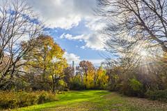 _DSC4802-HDR (purin_cess) Tags: centralpark 2016 autumn 11月 十一月 秋 中央公園 紐約 ny newyork