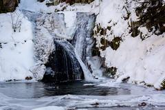 Not Frozen (RGaenssler) Tags: oppenau allerheiligenwasserfall deutschland schwarzwald europa badenwürttemberg blackforest forestanera forêtnoire selvanera