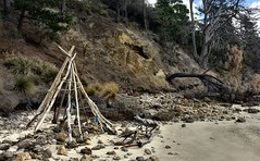 Beach teepee. Sheoak Point. Bruny Island.