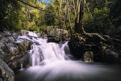 Cascade (Alex Apostolopoulos) Tags: green landscape longexposure vegetation nature waterfall water stream rocks fall slowshutter cyprus sony sonya6000 ilce6000 samyang samyang12mmf20ncscs haida haidand30 manfrottobefree