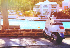 Vacation Vespa (DHaug) Tags: scooter vespa motorcyle bermuda sun flattsvillage december 2016 vacation halcyondays northshoreroad xt2 xf35mmf14r fujifilm