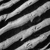 Wading Bird Footprints (roseysnapper) Tags: bw beschoi omm43 adapter olympus omd em10ii photax super paragon 70200 mm f3848 black white wading bird cramond edinburgh scotland abstract beach coast footprint graphic monochrome sand shore