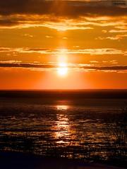 Another Beautiful - Explored (le Brooklands) Tags: coucherdesoleil d7000 deschaiiions fleuvestlaurent glace hiver ice orange québec sigma120300mm stlaurenceriver sunset winter