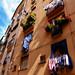 Old Genova