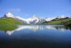 Bachalpsee Grindelwald (swisstravelstory) Tags: schweiz grindelwald bachalpsee