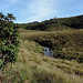 Horton Plains - The Beautiful Plains