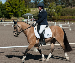 150903_NSW_D_Champs_Thu_2387.jpg (FranzVenhaus) Tags: horses state australia riding nsw newsouthwales athletes championships aus equestrian supporters riders officials dressage horsleypark spectatorsvolunteers