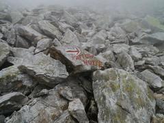 Groer Hafner => Kattowitzer Htte (rudi_valtiner) Tags: alps austria sterreich rocks stones mark krnten carinthia steine advice arrow alpen rubble autriche maltatal felsen hinweis pfeil hohetauern markierung ankogelgruppe groserhafner trmmerfeld wanderung20150728 salzgittersteig kattowitzerhptte