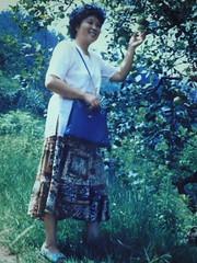 优秀教师——徐华珍  Excellent teacher -- Xu Huazhen (xuhuazhen1943) Tags: china teacher excellent 中国 guizhou 贵州 优秀教师
