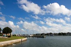 Sound Side (Stuart Borrett) Tags: ocean usa water outdoors northcarolina duke research marinelaboratory