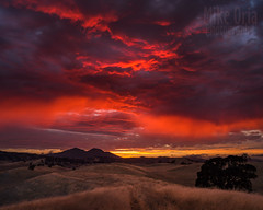 Sky Burn (mikeSF_) Tags: california county sunset summer mountain grass clouds landscape 645 glow pentax burn vineyards marsh diablo mtdiablo brentwood epic antioch oakley trilogy mountdiablo contracosta pentax645d mikeoria a3535 wwwmikeoriacom