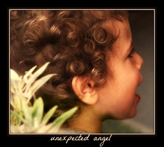 unexpected angel (Maewynia) Tags: angel hair child curly cherub