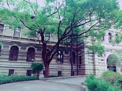 阪神淡路大震災 画像23