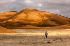 Sauntering in the Rub' al Khali - The Empty Quarter (Peter Hungerford) Tags: landscape sand desert dunes stealingshadows