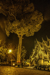 Chiang Mai_Huge Tree with Temple (tole_glock) Tags: thailand chiangmai bigtree hugetree