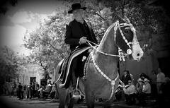 El rosillo bragao (Eduardo Amorim) Tags: horse southamerica argentina caballo cheval pferde cavallo cavalo gauchos pferd pampa gaucho amricadosul platera gacho amriquedusud provinciadebuenosaires recado gachos sudamrica sanantoniodeareco suramrica amricadelsur areco sdamerika pilchas pilchasgauchas recao pampaargentina americadelsud plateracriolla americameridionale eduardoamorim pampaargentino