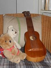 timple e orsetti (cristina.sanvito) Tags: home ukulele teddybear armchair orsetto
