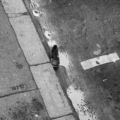 bonjour tristesse (paris) (jotka*26) Tags: street paris france berlin blancoynegro water germany shoe blackwhite scenery noiretblanc minimal rue minimalismo bonjourtristesse chaussure minimaliste schwarzweis minimalistisch 10712 jotka26 noussommesunis puddleformation
