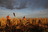 South Dakota Luxury Pheasant Hunt - Gettysburg 66