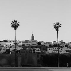 Entre Deux palmiers (A.B.S Graph) Tags: marina sale bateau palmier rabat mosquée rive salé oudaia oudaya
