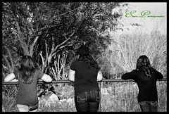 _MG_4172b (goss_maggie) Tags: familyphotos sistersphotos whitetanksaz desertaz treeclimbing