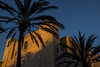 (Levan Kakabadze) Tags: spain españa menorca island mahon palmtrees sun light summer streetphotography