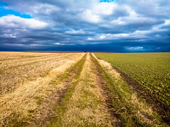 Storm is set ... (Hasan Yuzeir) Tags: storm sky cloud blue path wheat green gloomily hasanyuzeir lg k8 perspective